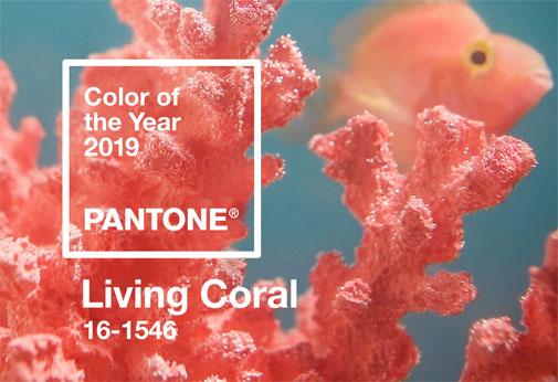 montagem da cor 2019 pantone living coral